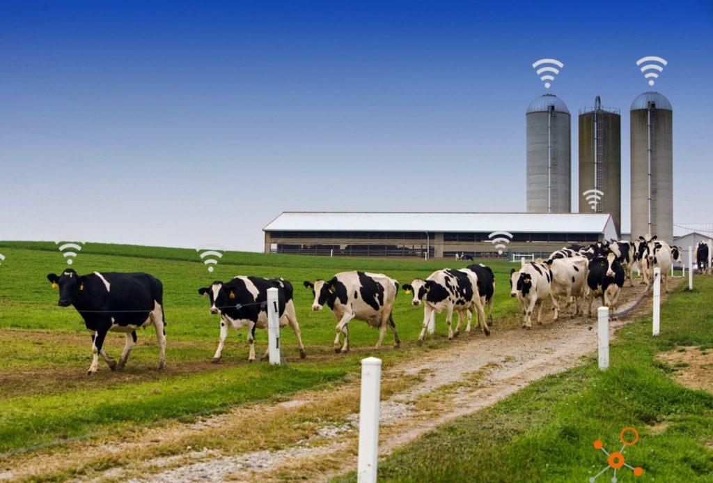 Smart Agriculture Landwirtschaft